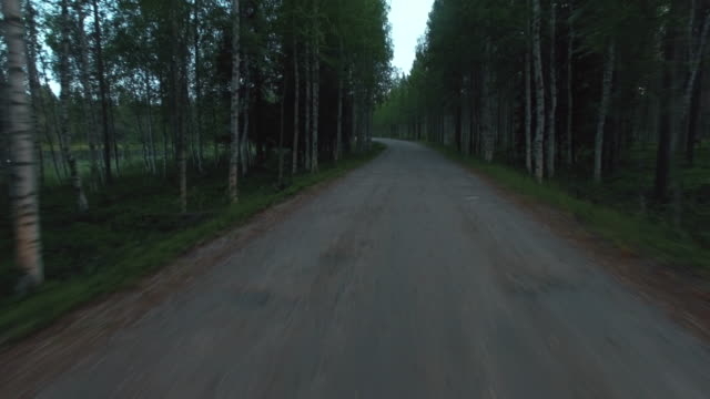 point of view flying along gravel road in birch forest - ghiaia video stock e b–roll