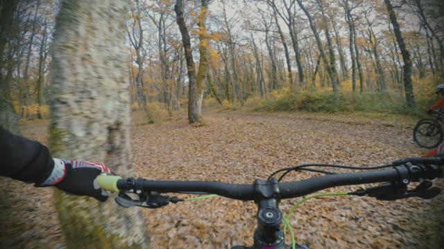 Perspektive POV: Gruppe von Freunden im Wald Mountain bike world championships – Video