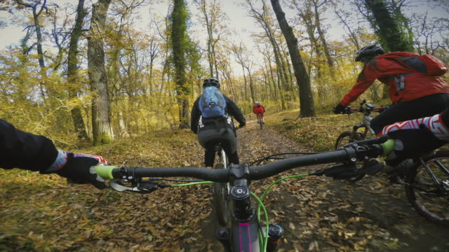 Point of view POV: group of friends mountainbike in forest video