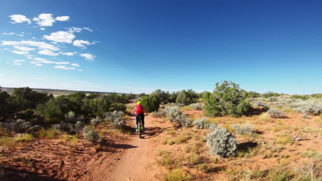point of view pov mountainbike in moab, utah - percorso per bicicletta video stock e b–roll
