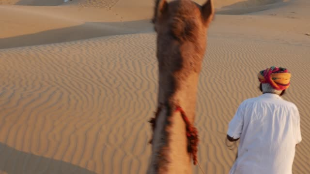 Point of View of a ride of camel in sand dunes in the desert