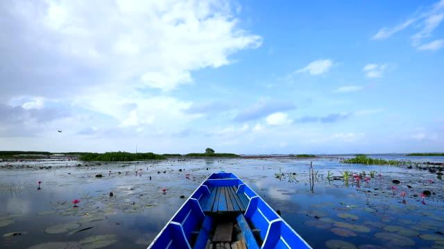 point of view of longtail boat cruising on stunning lake in ban pak pra -talay noi lake, phatthalung, thailand. - дикая местность стоковые видео и кадры b-roll