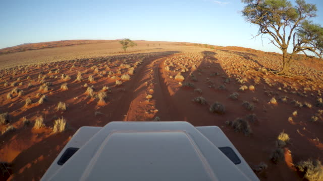 Point of view of safari vehicle driving through the Namib Desert Point of view of safari vehicle driving through the Namib Desert namibia stock videos & royalty-free footage