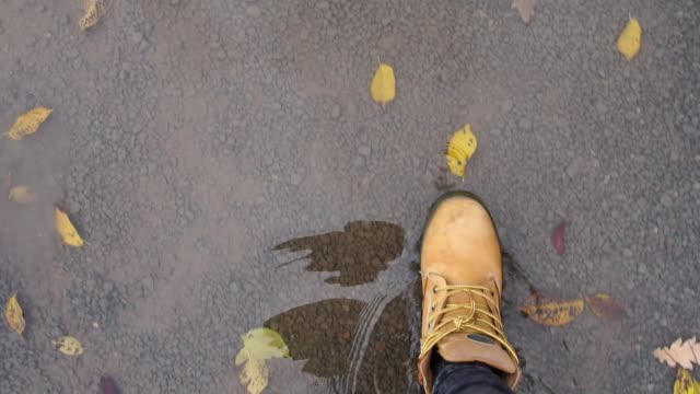 Point of View of walking on fall leaves video