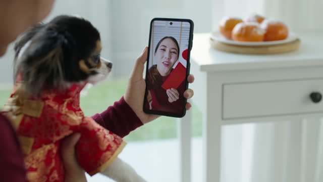 Point of view selfie videocall shot of attractive beautiful young asian lady in red chinese new year celebration outfit happy smile talk and looking to camera mobile phone wishing for lunar festival.