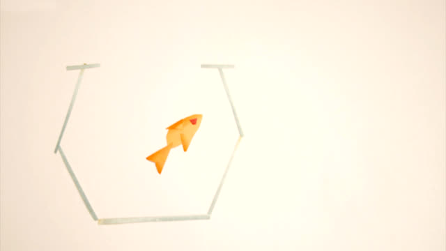 Poisson rouge animation/RED FISH LOOP - Vidéo