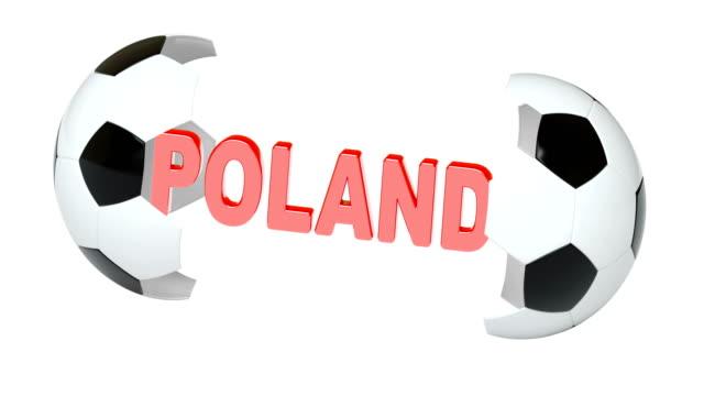 Poland. 4K Resolution. Looping. Poland. 4K Resolution. Looping. international match stock videos & royalty-free footage