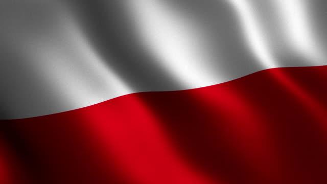 vídeos de stock, filmes e b-roll de bandeira da polónia acenando 3d. abstrato. loop de animação. - insígnia