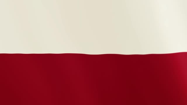 Poland flag waving animation. Full Screen. Symbol of the country video