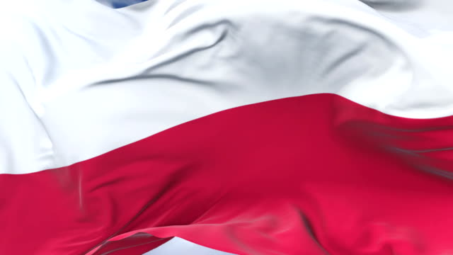 poland flag waving at wind with blue sky in slow, loop - polonia video stock e b–roll