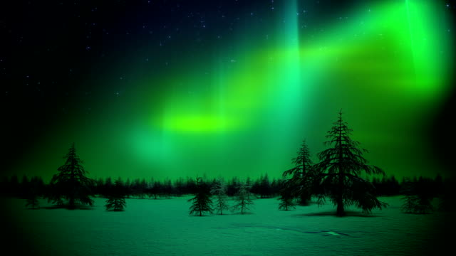 Polar lights in forest loop video
