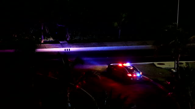 Police car lights flashing at night video