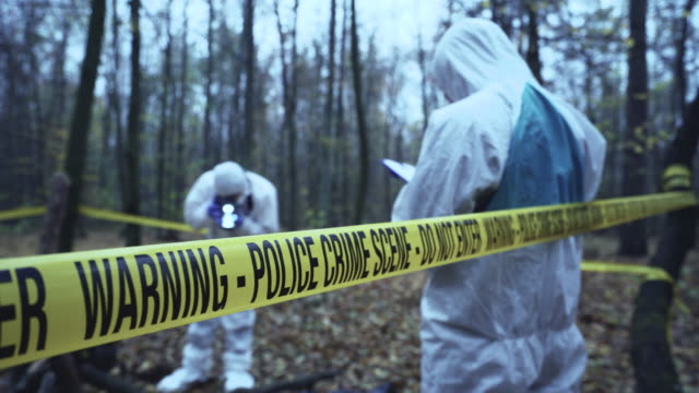 Police experts working at crime scene in forest, murder investigation, forensics