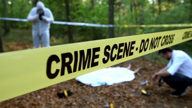 Police found a gun Two men, crime scene investigation, police and forensics doing their jobs, there is a dead body in the forest. crime scene stock videos & royalty-free footage