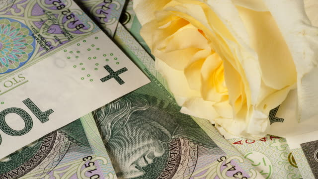 Polska zloty sedlar och Rose Flower video