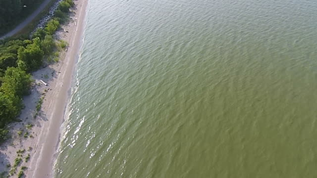 pollution in great lakes, green water aerial view - lakeshore stock videos & royalty-free footage