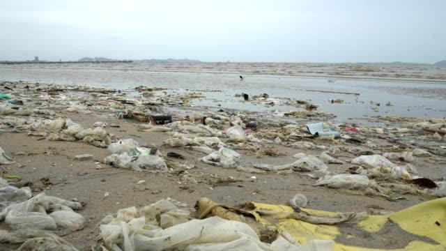 vídeos de stock e filmes b-roll de pollution on the beach of tropical sea. - sem higiene