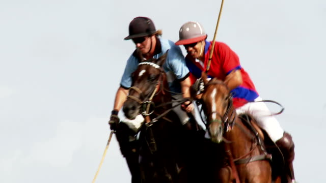 Polo Match video