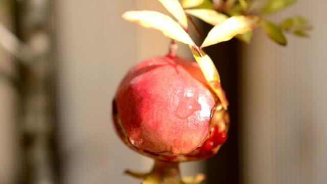 석류, 매크로 - rosh hashana 스톡 비디오 및 b-롤 화면