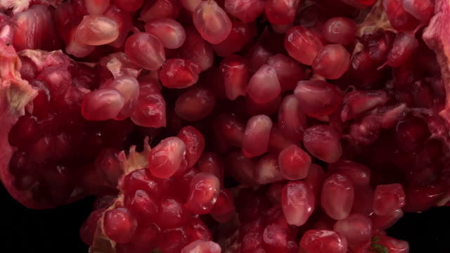 vídeos de stock e filmes b-roll de pomegranates in the air - romã