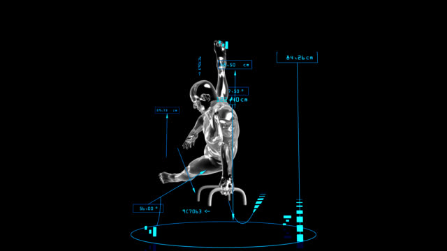 3D Pommel horse man with technical data