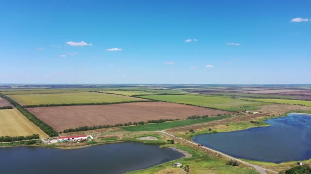 Pond and autumn agricultural fields. Harvesting. Pond and autumn agricultural fields. Harvesting. Aerial view agricultural occupation stock videos & royalty-free footage