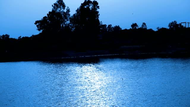 夜の池 - ハリヤナ州点の映像素材/bロール