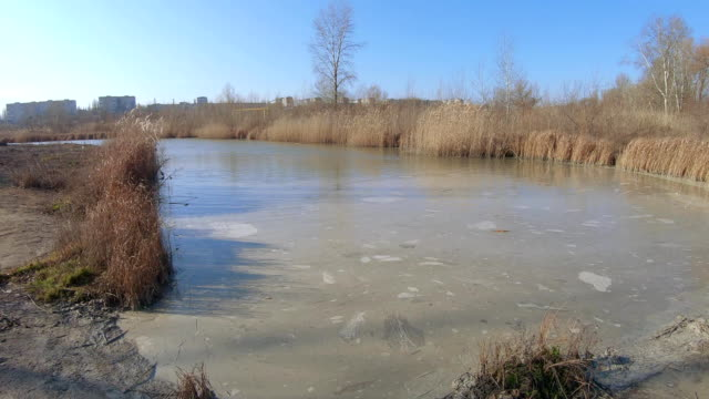 Pond for sludge with ash