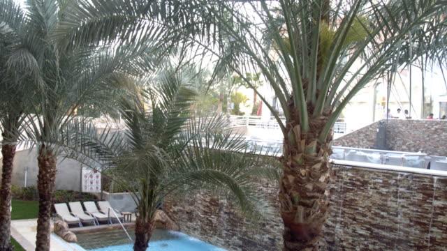 Poolterrasse und Palmen – Video
