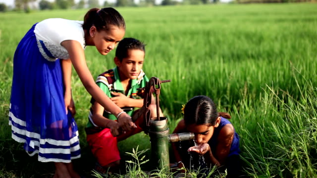 Poor Children drinking water outdoor in the nature HD1080p : Poor children of Indian ethnicity drinking water in the nature in the morning during sunrise in summer season. purified water stock videos & royalty-free footage