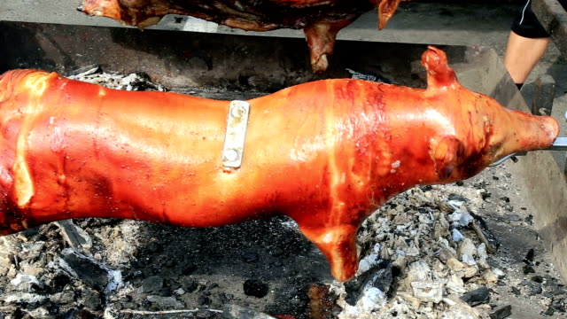 Pork carcass roasting on a rotating spit video