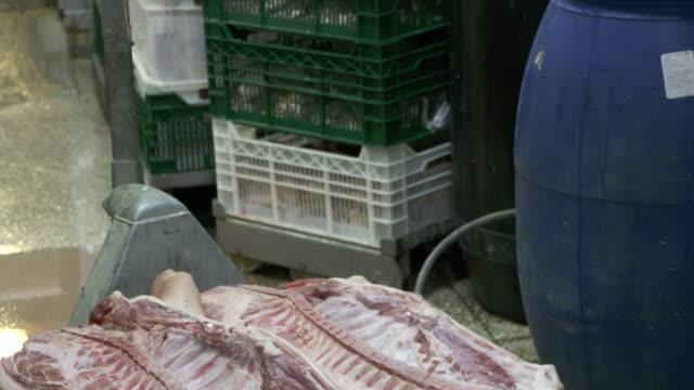 stockvideo's en b-roll-footage met varkensvlees karkassen liggend op pallet in de koelruimte bij slagers shop - dierlijk bot