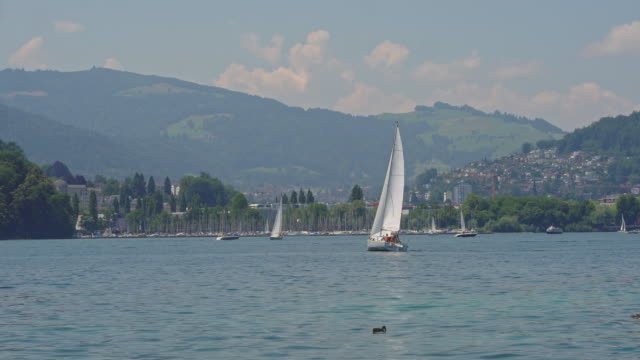Port and Marina with Sail Boat in Zurich - Stock video