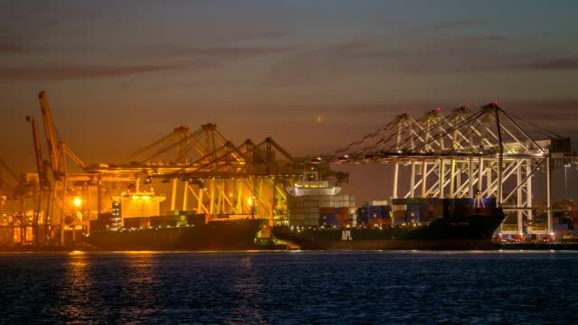 vídeos de stock, filmes e b-roll de porto - vinho do porto