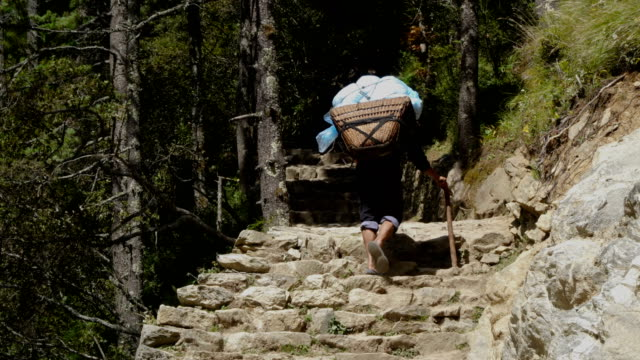 vídeos de stock, filmes e b-roll de porter está carregando uma carga no himalaia - pesado peso