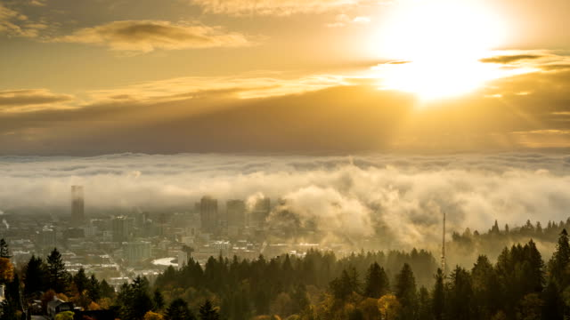 Portland downtown and autumn foliage with rolling fog and shiny rising sun video