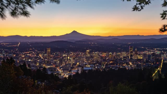 Portland with autumn foliage in twilight color transition at dawn on a windy day video