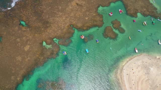 ポルト・デ・ガリハスのビーチとサンゴ礁、レシフェ、ブラジル - ブラジル文化点の映像素材/bロール