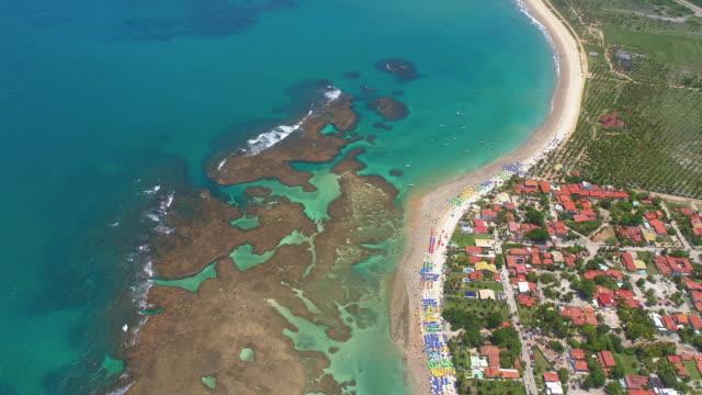 vídeos de stock, filmes e b-roll de praia e recifes de porto de galinhas, recife, brasil - nordeste