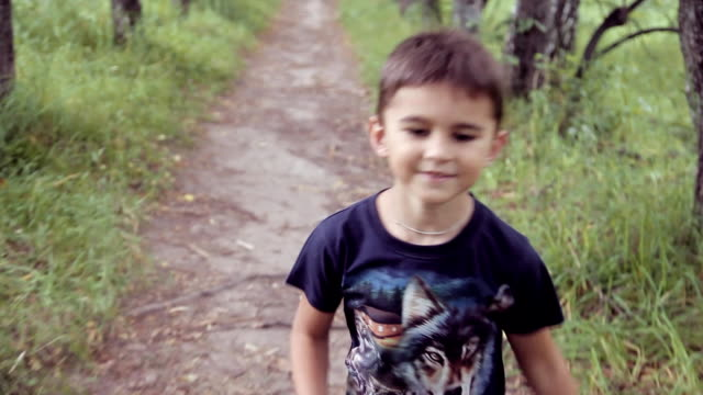 Portrait. A happy beautiful little boy walking in the park on a summer sunny day video