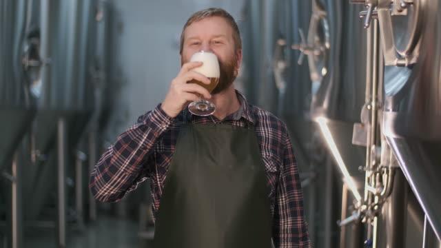 stockvideo's en b-roll-footage met portret. de vrolijke mannelijke brouwer proeft vers gebrouwen bier naar smaak verlatend schuim op zijn snor terwijl het bevinden zich in een bierfabriek - milkshake