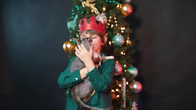 Portrait of a boy with a cat in his arms and a red crown on his head.