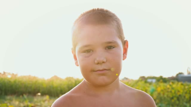 Portrait of a chubby boy with a black eye on the background of a green field, a child with a naked torso and a bruise on his face, low-key smile Portrait of a chubby boy with a black eye on the background of a green field, a child with a naked torso and a bruise on his face, close-up, low-key smile only boys stock videos & royalty-free footage