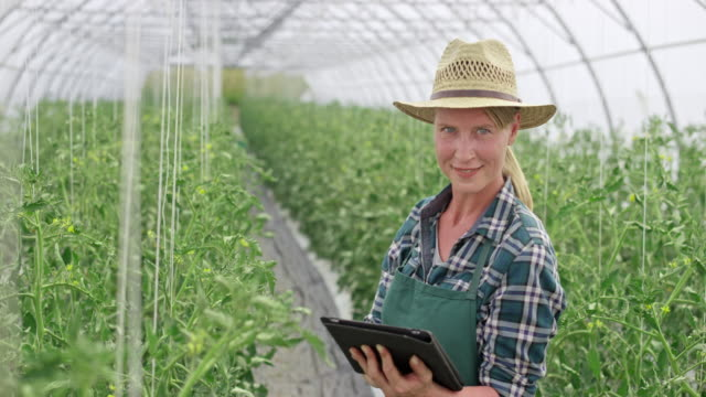 Portrait of a female farmer using a tablet in the greenhouse video