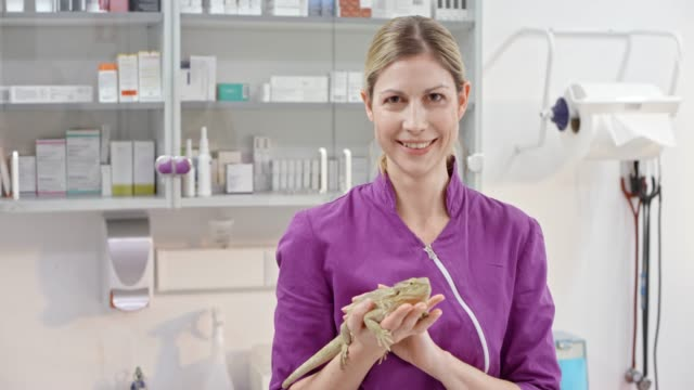 Portrait of a female veterinarian holding a bearded dragon in her hand in her office