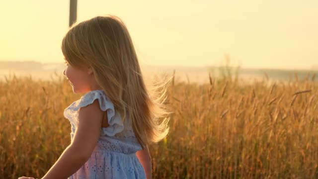 Portrait of a little girl in the wheat field. video
