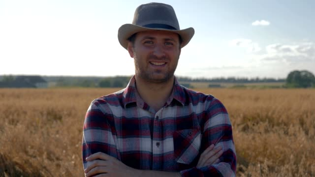 portrait of a man farmer standing in a wheat field on a sunny summer day - cowboy video stock e b–roll