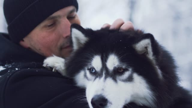 Portrait of a man in winter outerwear hugging and talking to a husky outdoors. Guy with his pet. Portrait of a man in winter outerwear hugging and talking to a husky outdoors. Guy with his pet. hound stock videos & royalty-free footage