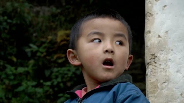 ネパールの少年の肖像画 - ネパール人点の映像素材/bロール