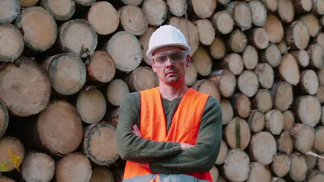 ritratto di operaio in occhiali e casco sullo sfondo dei tronchi degli alberi - motosega video stock e b–roll